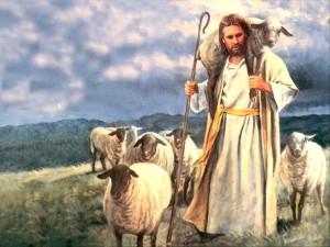 84279Good shepherd, by Del Parson Wallpaper__yvt2