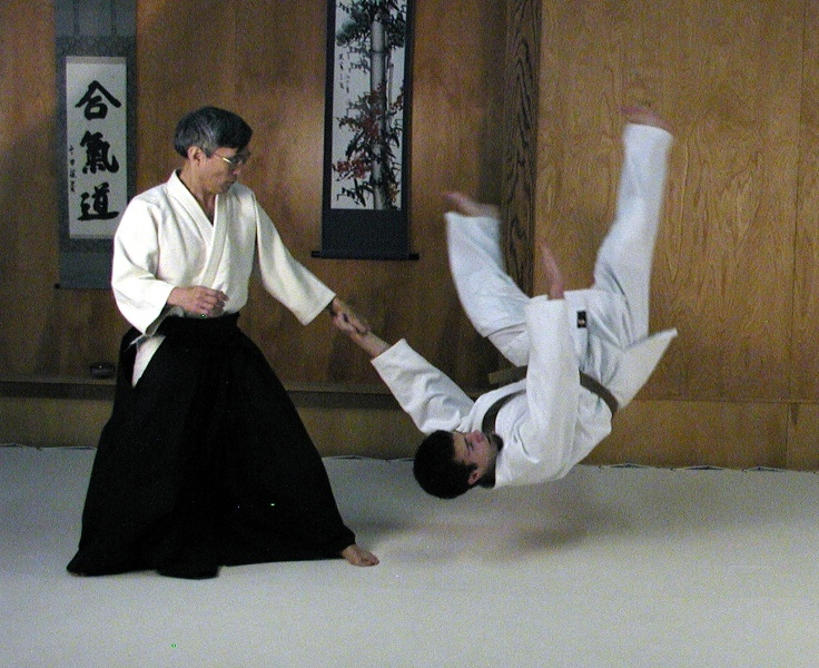 1360022515_aikido-plr-articles